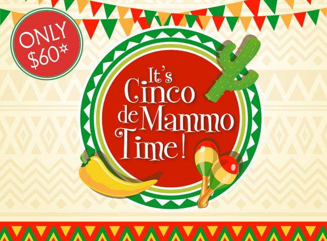 It's time to Celebrate Cinco de Mammo